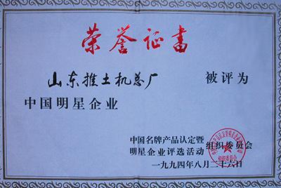 同年被评为中国明星企业
